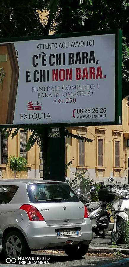 281f1b5yxm-bara-in-omaggio-vaccata_a.jpg